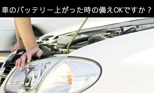 【送料無料】TOHO ポータブルバッテリーレスキュー RLC-SPB08